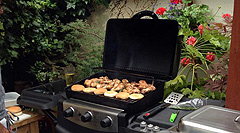 watermans-arms-garden-bbq